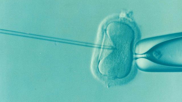 Psycholožka na IVF klinice popisuje, co řeší neplodné páry